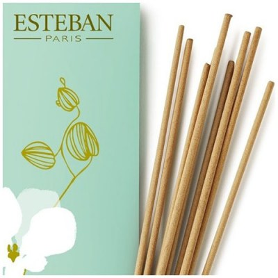Bdc_0001_orchidee-blance-esteban-20-incense-sticks